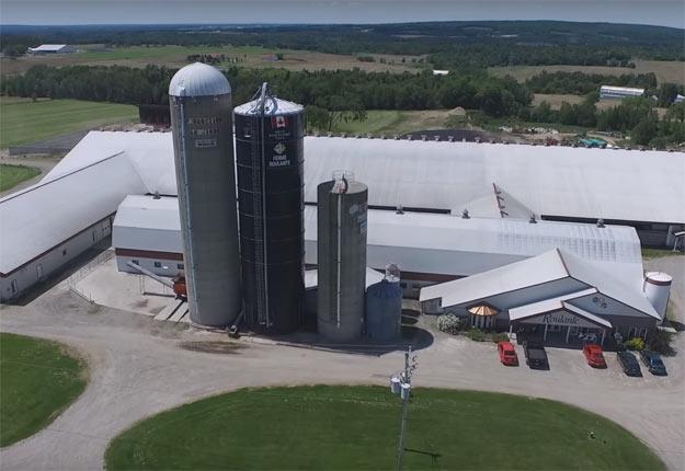 La Ferme Roulante compte actuellement 600 vaches. Image tirée d'une vidéo de Benoit Pharand.