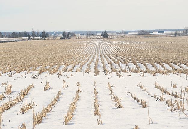 Dans son rapport2017-2018, la CPTAQ indique avoir autorisé des usages non agricoles sur 1600ha. Crédit photo : Archives/TCN