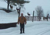 Richard Lemay, de Saint-André-d'Argenteuil, anticipe des pertes de 50 000 $ liées à la découverte, dans un autre élevage, de la maladie débilitante chronique des cervidés l'automne dernier. Gracieuseté de Richard Lemay