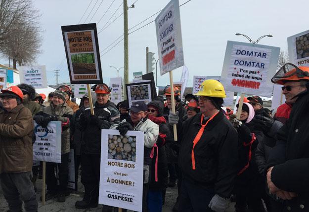 Entre 200 et 250 producteurs forestiers en provenance des quatre coins du Québec ont manifesté à Sherbrooke mercredi matin. Crédit photo : Martin Ménard