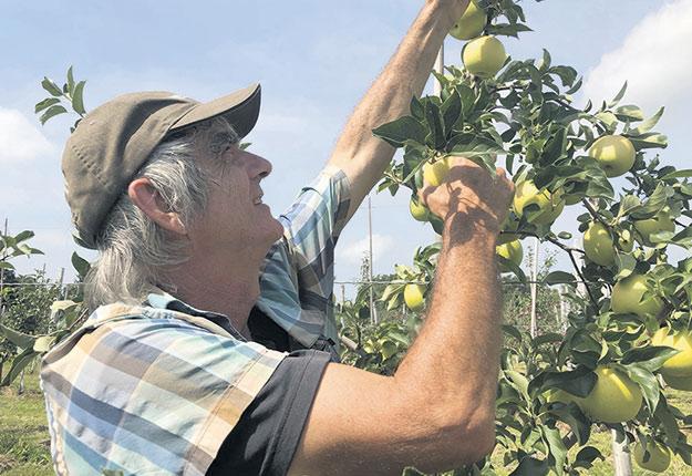 Roland Joannin, hybrideur et fondateur du collectif La Pomme de demain. Crédit photo : Josianne Desjardins/Archives TCN