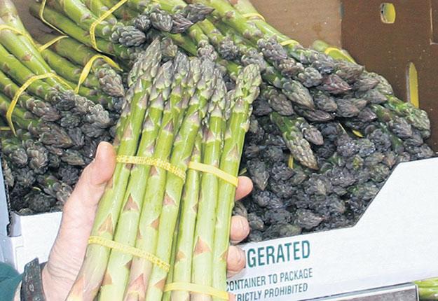 Les producteurs maraîchers devront s'assurer qu'une étiquette est apposée sur les fruits et les légumes frais. Crédit photo : Archives/TCN