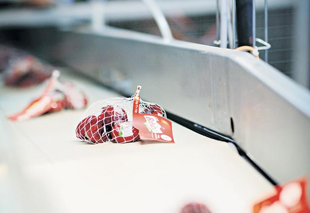 Les Mini Babybel seront produits à la nouvelle usine canadienne du groupe français Bel dès 2020. Crédit photo : gracieuseté de Franck Juery