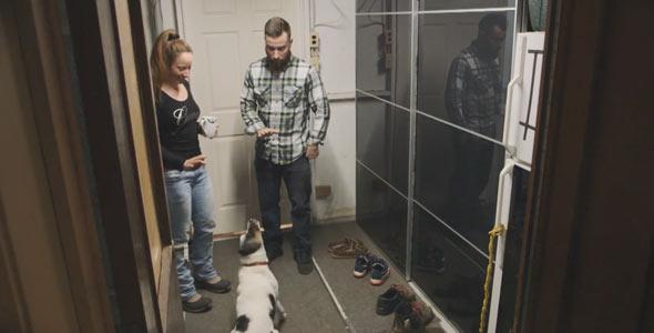 Le chien d'Alexandre V. peut ouvrir un réfrigérateur s'il y a une corde sur la poignée et rapporter des bières. Ça, c'est pratique dans une ferme!