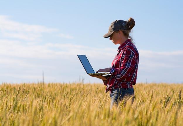 Financement agricole Canada (FAC) a été mandaté par le ministre de l'Agriculture pour développer une stratégie favorisant l'entrepreneuriat au féminin, a révélé le vice-président aux opérations pour le Québec de FAC, Vincent Giard.. Crédit photo : Shutterstock.com