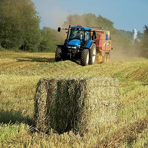 Que vous soyez un petit producteur laitier ou que vous teniez les commandes d'une exploitation agricole d'envergure, vous trouverez un équipement de fenaison convenant à vos besoins.