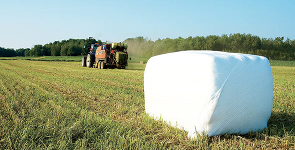 Lorsqu'elles sont emballées rapidement,  les balles d'ensilage contiennent un fourrage de meilleure qualité et présentent un risque moindre de moisissures.