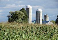 Beaucoup de contribuables se voient refuser leurs pertes agricoles par les autorités fiscales et chaque année, les tribunaux ont à se pencher sur de nombreuses causes à ce sujet. Crédit photo : Archives/TCN