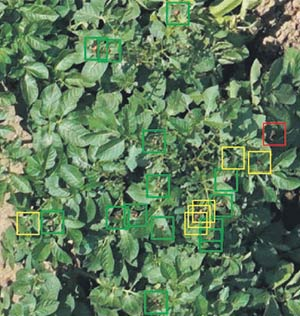 Cette photo, prise sur le drone pendant l'un des vols d'essai, montre le degré de précision de l'algorithme de détection. Les carrés verts indiquent les prédictions correctes, tandis que les jaunes et les rouges signalent les omissions et les erreurs. Gracieuseté de l'INRS