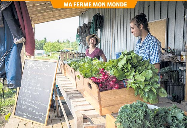 Pour les maraîchers Andrée-Anne Cloutier et Olivier Bergeron, le travail doit être une source de bonheur et de plaisir. Crédit photo : Gracieuseté du Jardin des gourmands