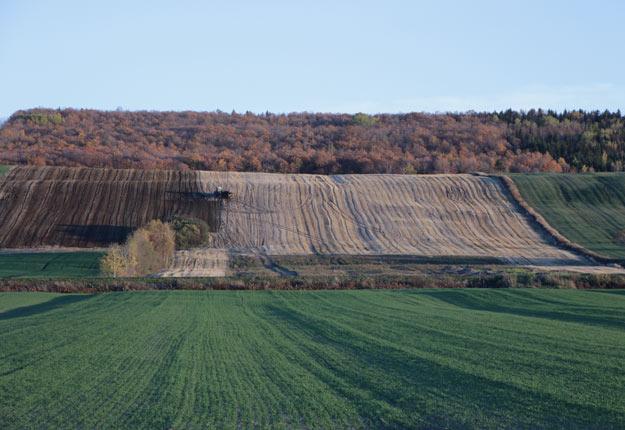 La valeur des terres de la région Bas-Saint-Laurent–Gaspésie a bondi de 17,7 % en 2018. Crédit photo : Archives/TCN