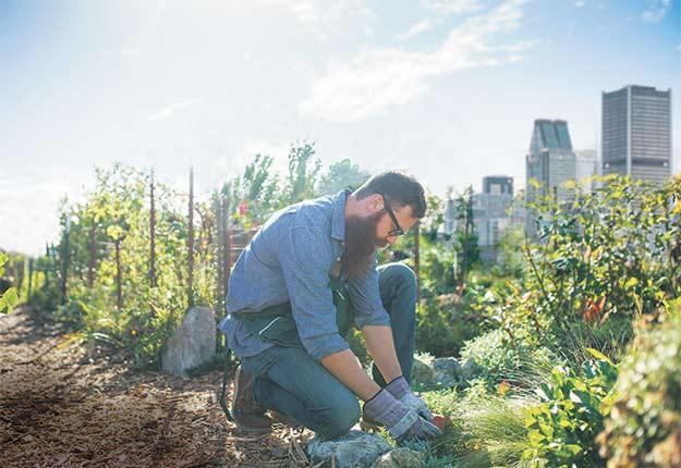 L'industrie horticole ornementale québécoise peut désormais compter sur de nouvelles clientèles jeunes et désireuses de protéger l'environnement. Crédit photo : Shutterstock