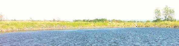 Pour répondre à tous les besoins en eau d'un producteur de pommes de terre, il faudrait de très grands étangs. L'espace devient rapidement une contrainte.