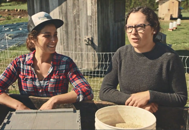 Mélanie Villemaire et sa collègue Mathilde Bouchard s'apprêtent à nourrir les poules heureuses à la Ferme des Quatre-Temps, de Port-au-Persil.