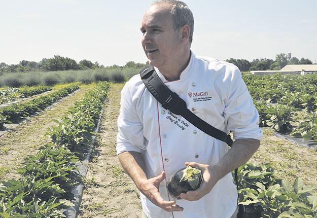 Le chef Oliver deVolpi prend plaisir à arpenter les champs de la Ferme Macdonald remplis de fruits et de légumes frais. Ses coups de cœur: les tomates et les melons. Photo : Université McGill.