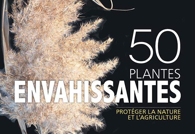 Le livre50 plantes envahissantes se penche entre autres sur le cas de 29espèces susceptibles de nuire à la productivité des terres agricoles québécoises. Photo : Les publications du Québec