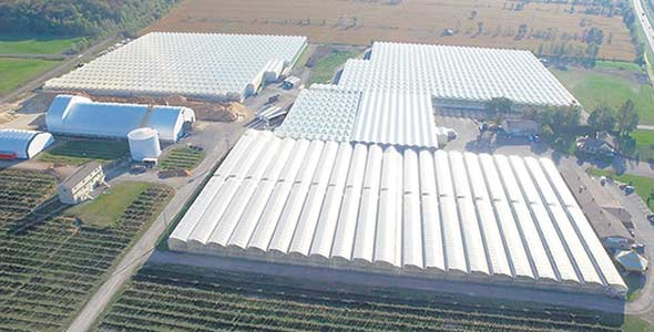 Les Serres Bertrand, à Mirabel. Crédit photo : Canopy Growth Corporation