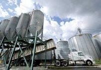L'entreprise Olofée effectue 90% de son transport de grain par elle-même. Photos : Ferme Olofée