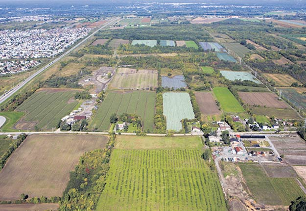 La vérificatrice générale de Laval constate qu'un coup de barre devra être donné pour atteindre les cibles fixées en matière de gestion du territoire agricole. Photo : Photohélico.com