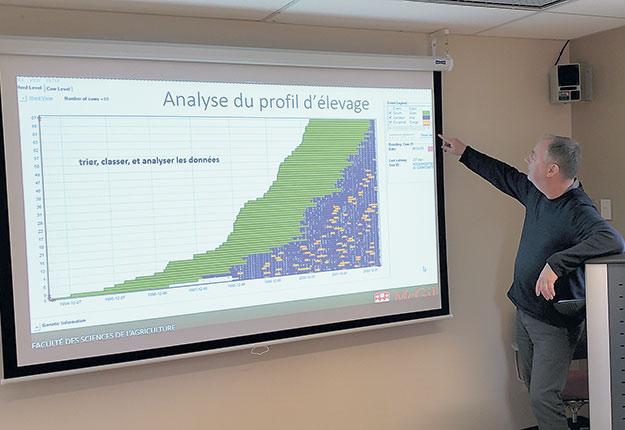 Kevin Wade, à l'emploi de l'Université McGill depuis 1992, réalise des graphiques qui représentent la rentabilité d'une vache en fonction de certains problèmes de santé. Photo : Gabriel Dallago