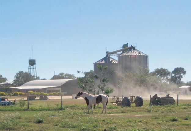 Une ferme de bétail et de soya dans les basses terres de Bolivie à proximité de Santa Cruz de la Sierra, dans la province de Santa Cruz, en 2013. Cette parcelle de terre où trône un silo à grains a récemment été gagnée sur la forêt. Photos : Yann le Polain de Waroux