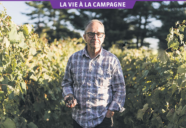 Marcel Lebœuf prend grand soin de ses vignes pour produire ses précieux raisins. Photos : Marie-Ève Rompré