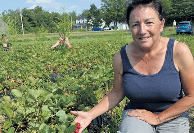 La productrice maraîchère Louise Villeneuve, de la Ferme La Cueille, est satisfaite de son expérience avec Maski récolte. Photo : Pierre Saint-Yves/TCN