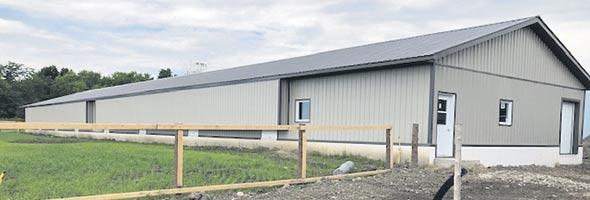 Depuis 2014, la Ferme Ritter, située en Montérégie, a investi dans l'aménagement de pondoirs de poules en liberté pour produire des œufs de consommation biologiques et répondre à la demande croissante.