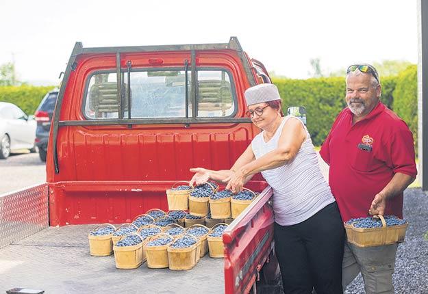 La vente directe sourit à Céline Harnois et à Marc Leblanc, de Rawdon, dans Lanaudière. Photo : Martin Ménard/TCN