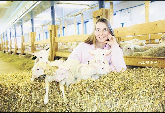 Sabrina Maltais a œuvré aux Fermes Solidar pendant 10ans afin de développer avec passion la génétique de brebis et la production de lait. Photo : Gracieuseté de Sabrina Maltais