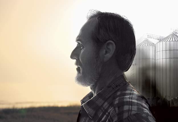 Un an de consultations sur la santé psychologique des agriculteurs, longtemps ignorée, incite un comité fédéral à presser Ottawa d'investir dans le bien-être des artisans de la terre. Photomontage: Chantal Lafond/TCN