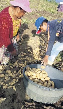 José possède des terres au Guatemala, où il fait surtout pousser des pommes de terre et des choux.