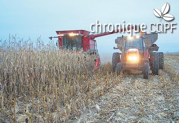 Cette année encore, les météorologues prévoient un début d'automne hâtif qui pourrait compliquer les récoltes des plantes fourragères. Photo : Archives/TCN