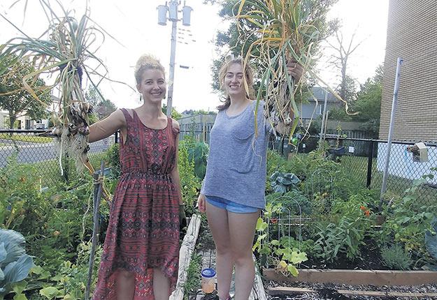 Audrey Wagner et Stéfanie Larose, deux étudiantes de Caroline Begg dans un jardin communautaire dans l'ouest de l'île de Montréal. Photo : Caroline Begg
