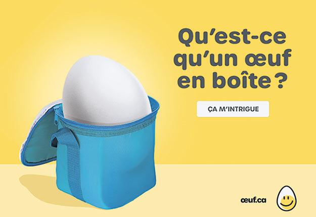 La campagne À chacun son œuf présente une douzaine de profils d'œufs à déguster à différentes occasions. Photo : Gracieuseté de la FPOQ