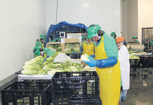 Certains producteurs ne seraient pas payés avant 90 à 120jours après la vente de leurs fruits et légumes. Photo : Archives/TCN