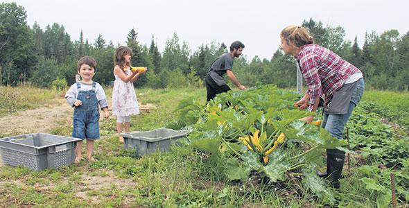 «On ne force pas les enfants à venir nous aider; ils viennent de leur plein gré, que ce soit pour les récoltes ou l'arrosage des plants», explique Karine Masseau.