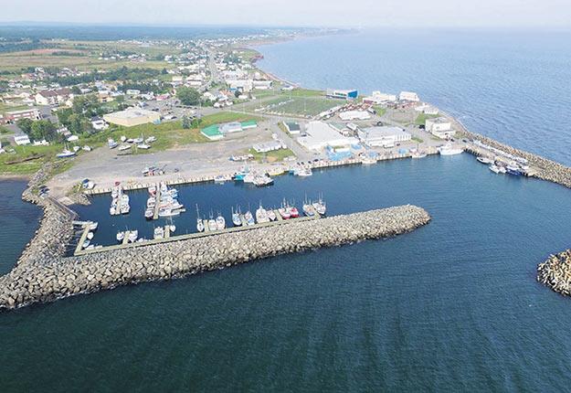 Une énorme ferme aquacole devait être construite sur les terres de la Ville de Grande-Rivière, en Gaspésie, et fournir ses premiers saumons en 2020, mais le projet se trouve dans une impasse majeure. Photo : Ville de Grande-Rivière