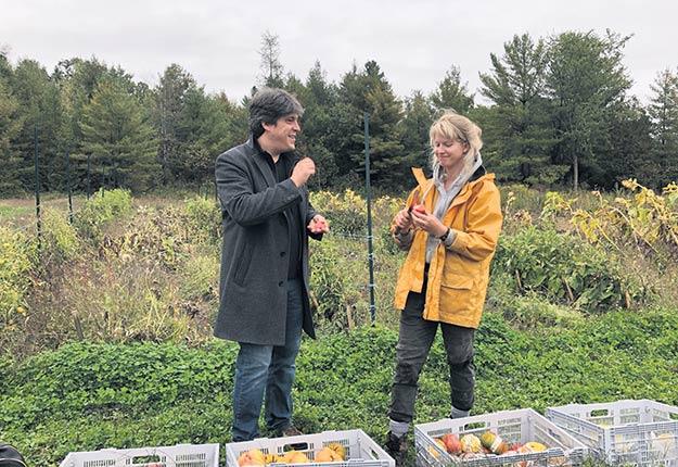Le chef Constant Mentzas, du restaurant Ikanos, et l'horticultrice Shaina Hayes font un test de goût des différentes variétés de tomates du jardin, à Hemmingford. Photo : Josianne Desjardins/TCN