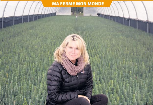 La directrice des ressources humaines de la Pépinière Boucher, Division des plants forestiers, Sophie Limoges, mentionne que les suggestions des employés doivent avoir des suites. Photo : Gracieuseté de la Pépinière Boucher