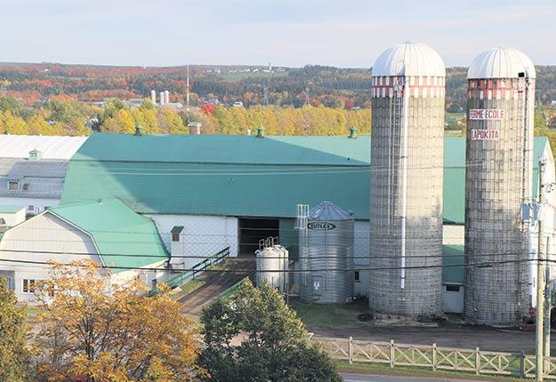 La Ferme-école Lapokita s'est notamment vu infliger une amende pour écoulement d'eau contaminée depuis son parc de bovins de boucherie. Photo : Maurice Gagnon