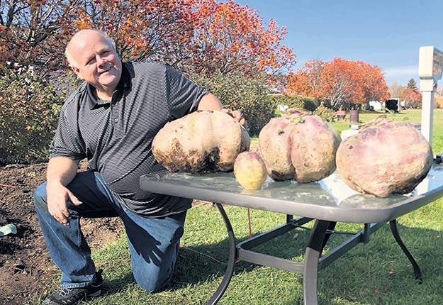 Damien Allard pose avec ses trois navets de 16, 11 et 9kg, qui sont gigantesques comparativement à un légume acheté au marché. Photo : Gracieuseté de Damien Allard