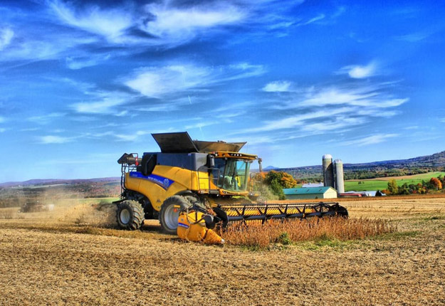 À Danville, en Estrie, Stéphane Roy est satisfait de sa récolte de soya et surtout de la température qui permet de le récolter rapidement. Crédit photo : Gracieuseté de Stéphane Roy