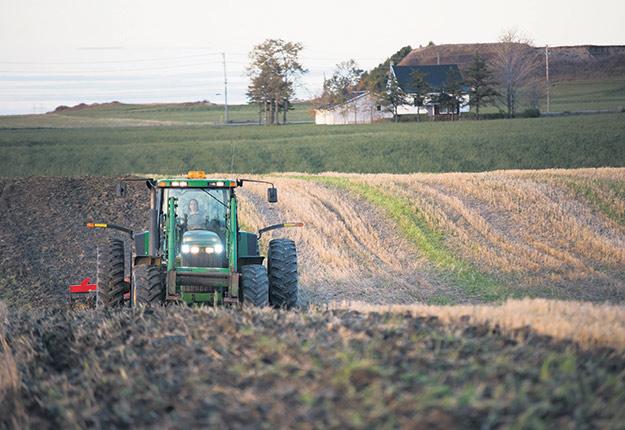 En hausse, les versements de l'ASRA sont principalement associés aux secteurs des porcs et porcelets (51% des versements), des veaux d'embouche (25%) ainsi que des céréales et du canola (14%). Photo : Martin Ménard / TCN
