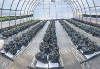 En cinq ans, le nombre de producteurs agricoles de la Côte-Nord est passé de 80 à 126. Parmi les nouvelles entreprises, la Serre de Colombier, mise sur pied par la Municipalité de Colombier, approvisionne en tomates et en concombres les habitants de la région. Photo : Gracieuseté de la Serre de Colombie