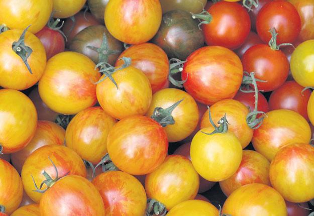 Après la récolte, 61% du gaspillage alimentaire est attribuable aux consommateurs. Photo : Pascal Thériault