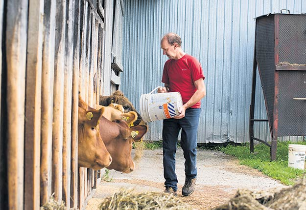 Marc Cyr et les six autres propriétaires de Bœuf Gaspésie disent que leur élevage en est un de « bœuf logique », car ils appliquent le meilleur des pratiques conventionnelles et biologiques. Photo : Gracieuseté de Marc Cyr