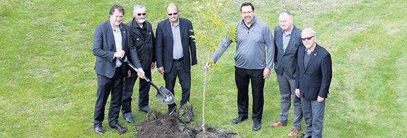 Un érable du Canada a été planté le 3 juin pour le départ de Lactanet.