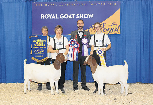 Les chèvres portant le préfixe Du Biquet ont littéralement dominé. À gauche, les éleveuses Evelyne La Roche et Nancy Mc Neil. Photo : Chèvrerie du Biquet