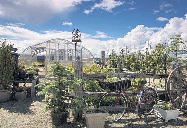 La culture maraîchère prend progressivement sa place sur le terrain de l'entreprise qui fait aussi dans l'aménagement paysager.